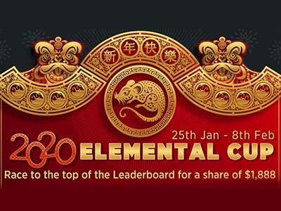 2020-elemental-cup-natural8