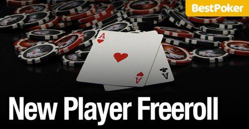 bestpoker new player freeroll